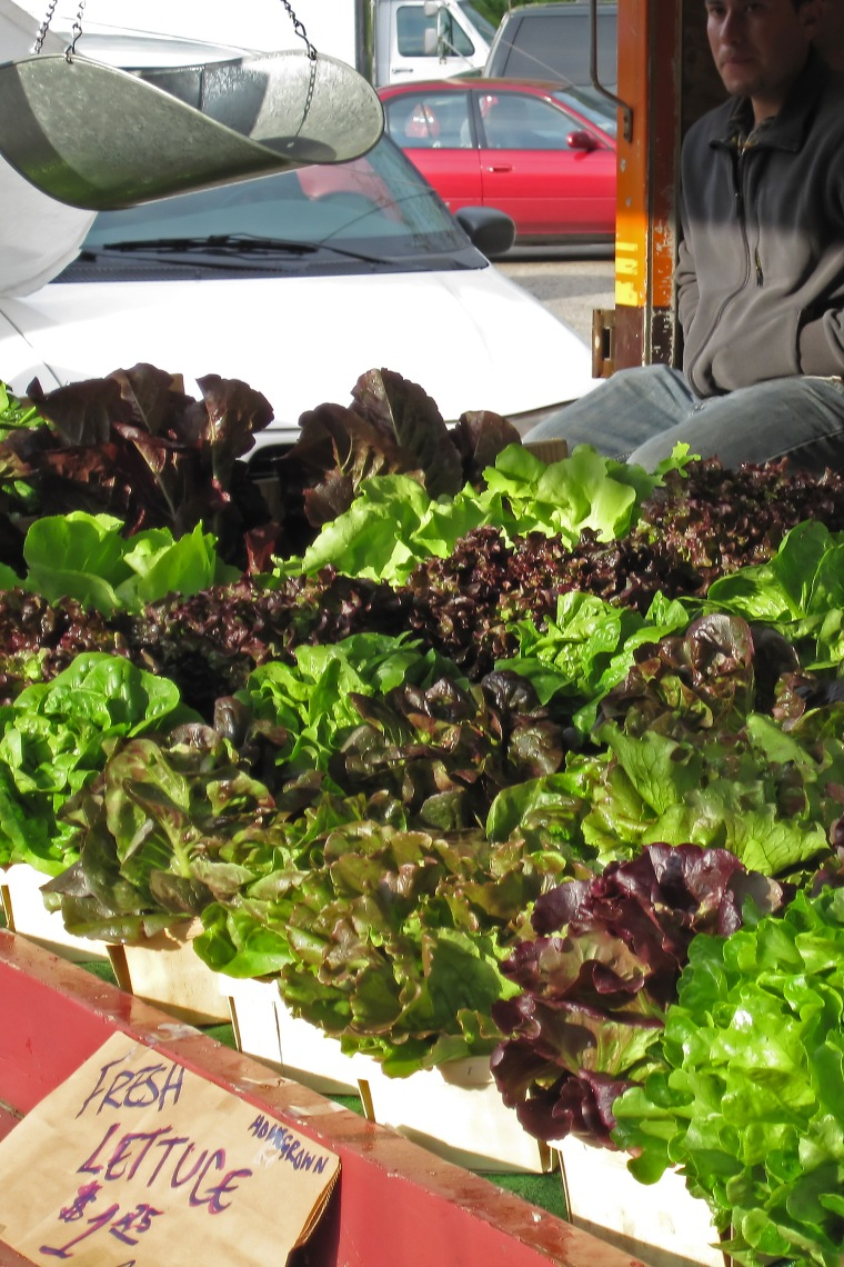 Fresh_lettuce