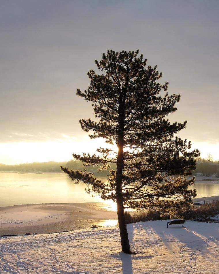 Sunday_morning_in_december_2