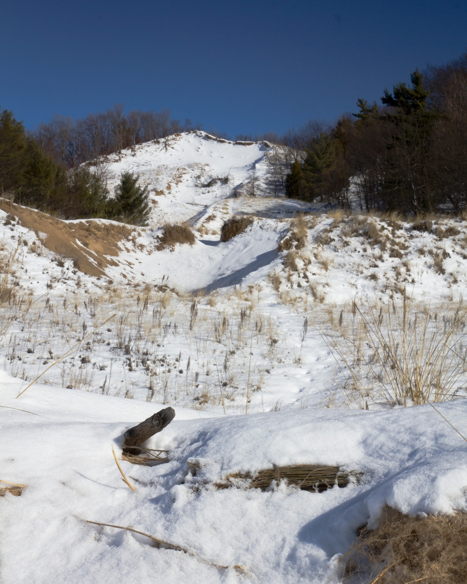 Hoffmaster State Park-2378
