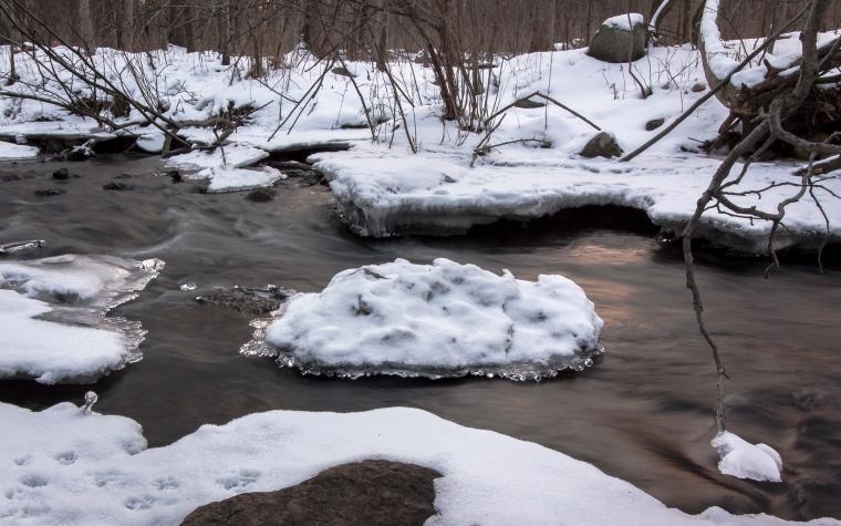 Honey Creek-2415