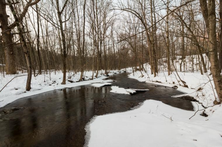 Honey Creek-2424