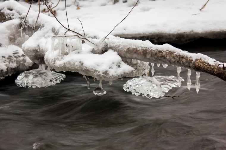 Honey Creek-2427