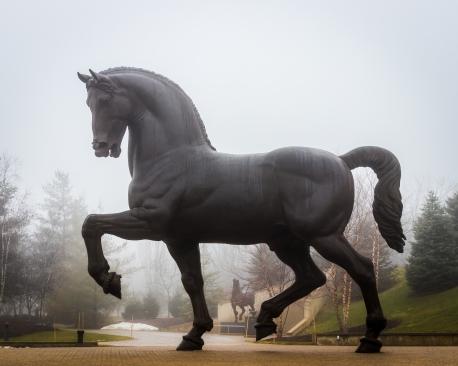The American Horse, by Nina Akamu