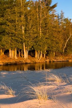 Shalda Creek-7056