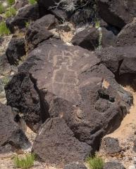 Petroglyphs-6868