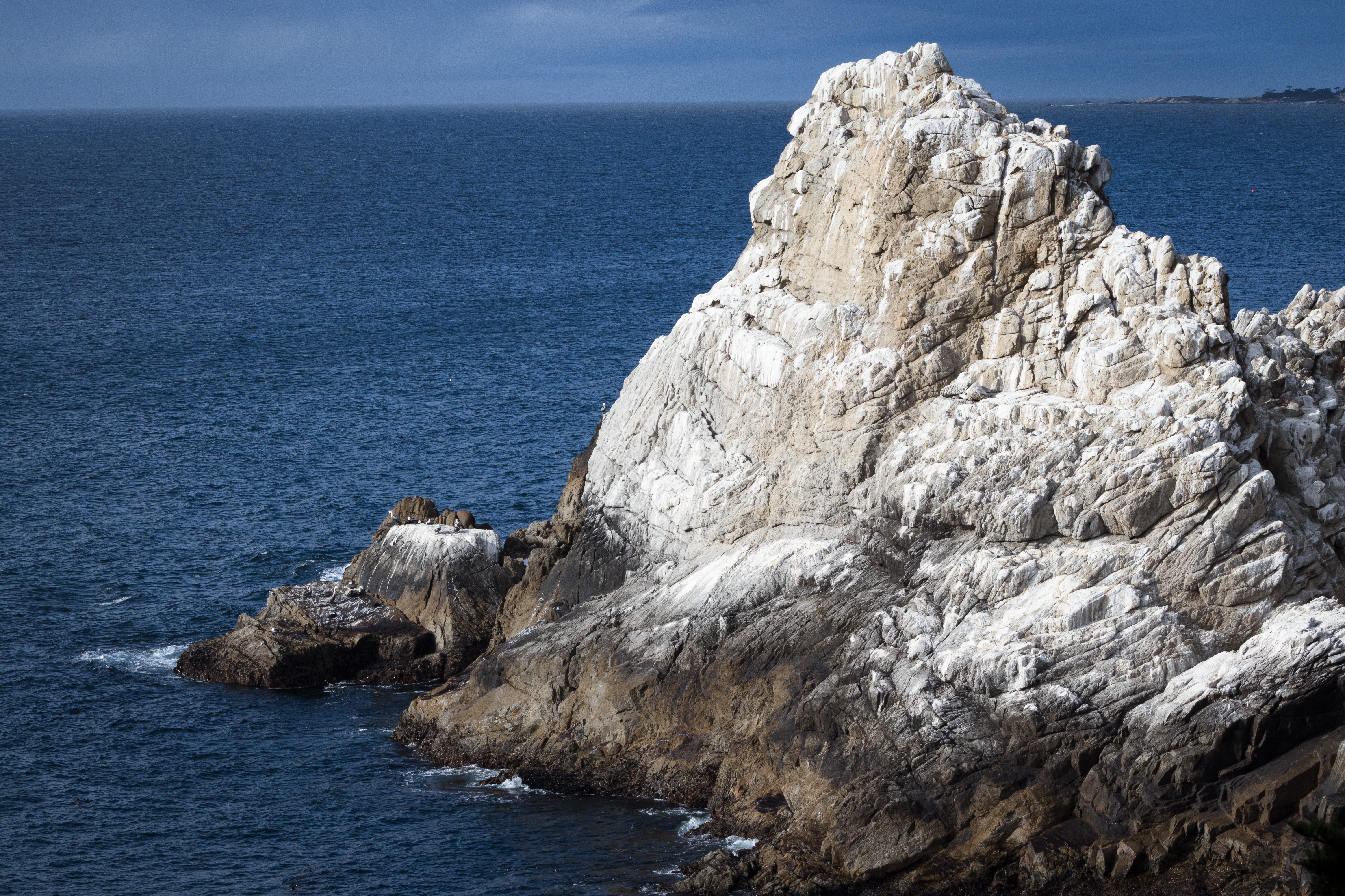 Point Lobos-2095