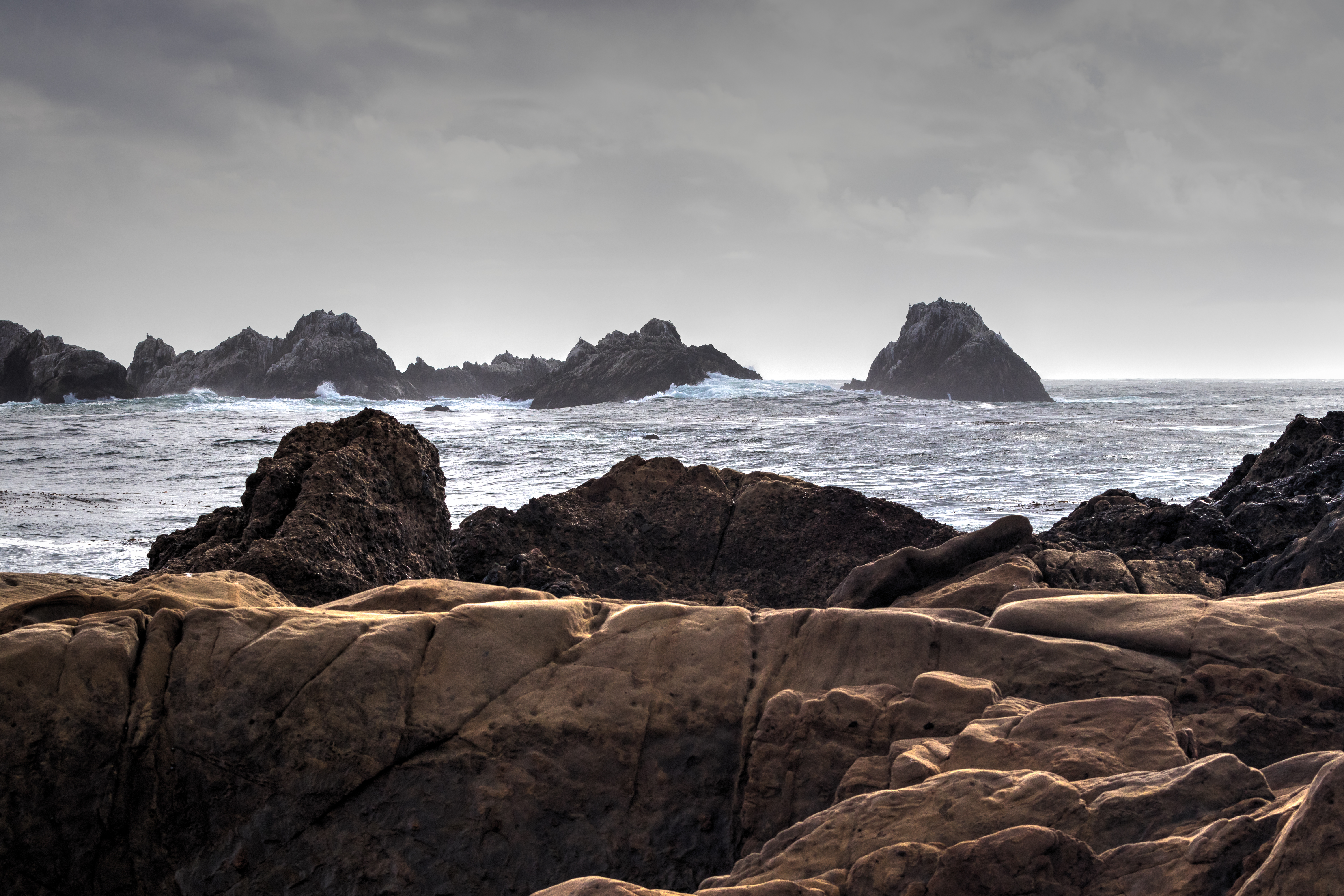 Point Lobos-2201