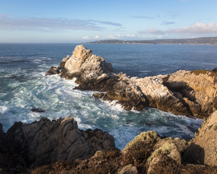 Point Lobos-2333