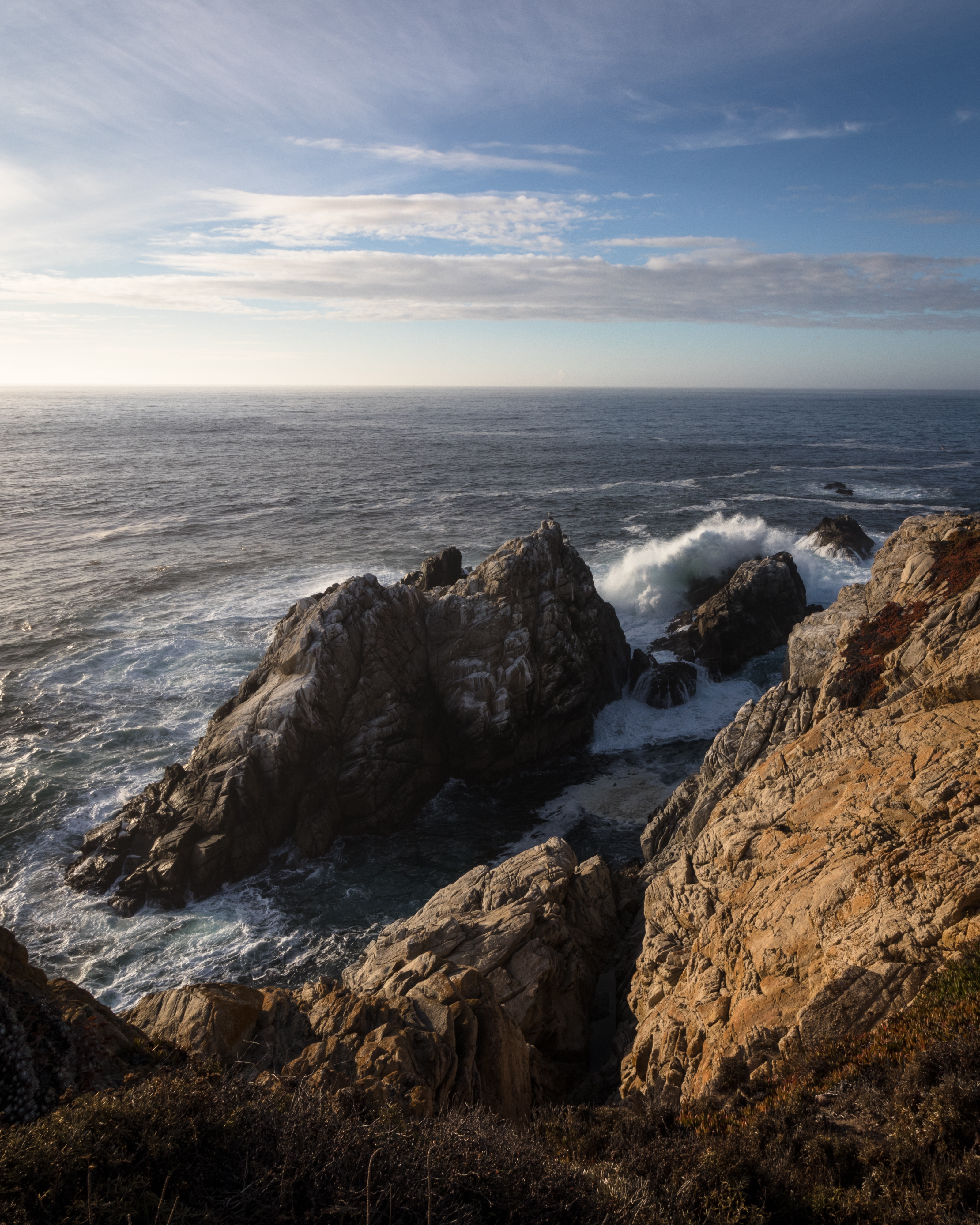 Point Lobos-2353