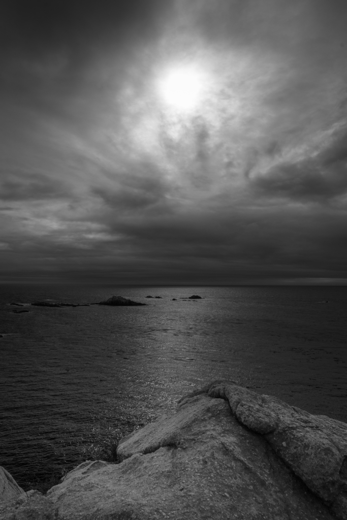 Point Lobos B&W-2075