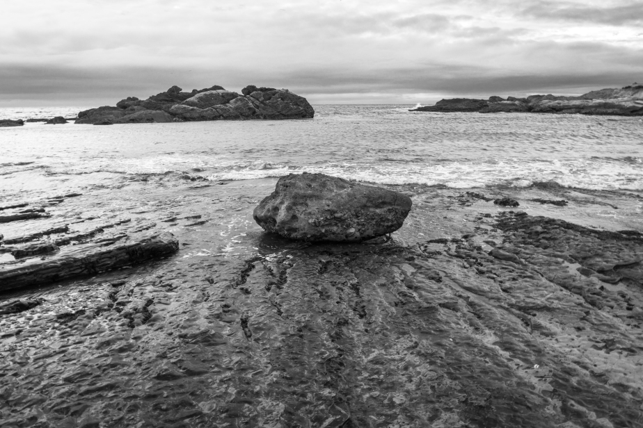 Point Lobos B&W-7641-3