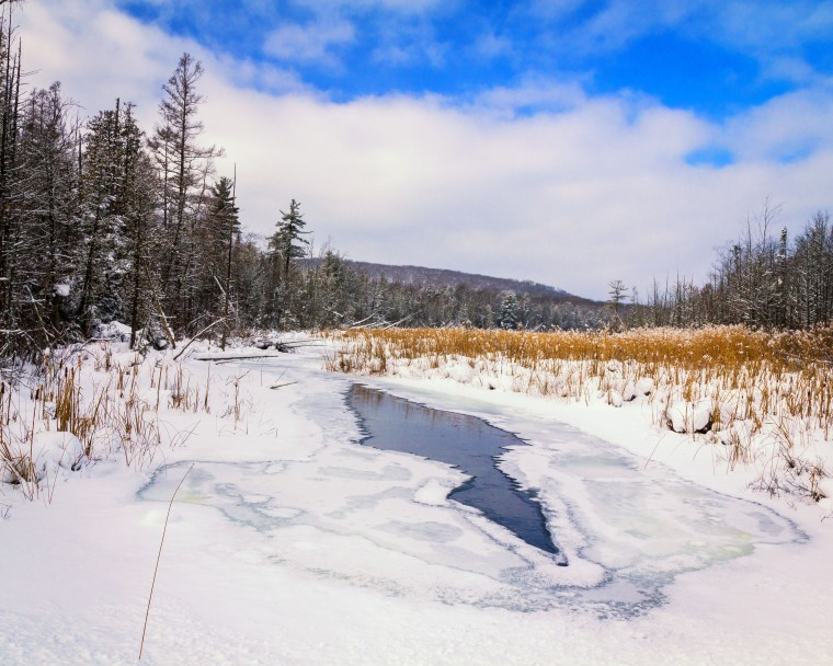 Shalda Creek 7924a