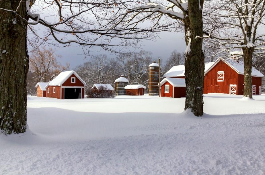 Tweedle Farm- 7911a