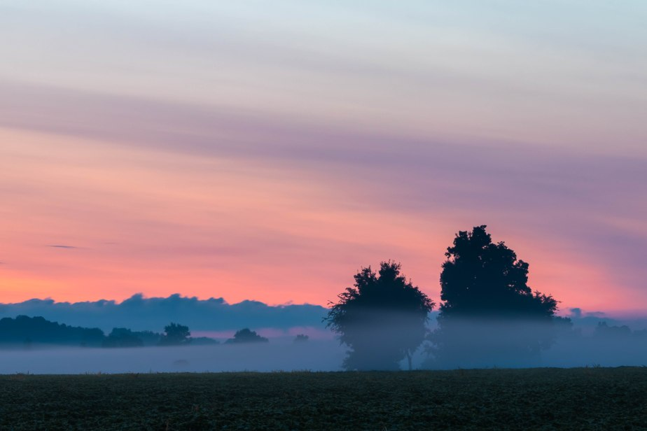 Bell road before dawn-