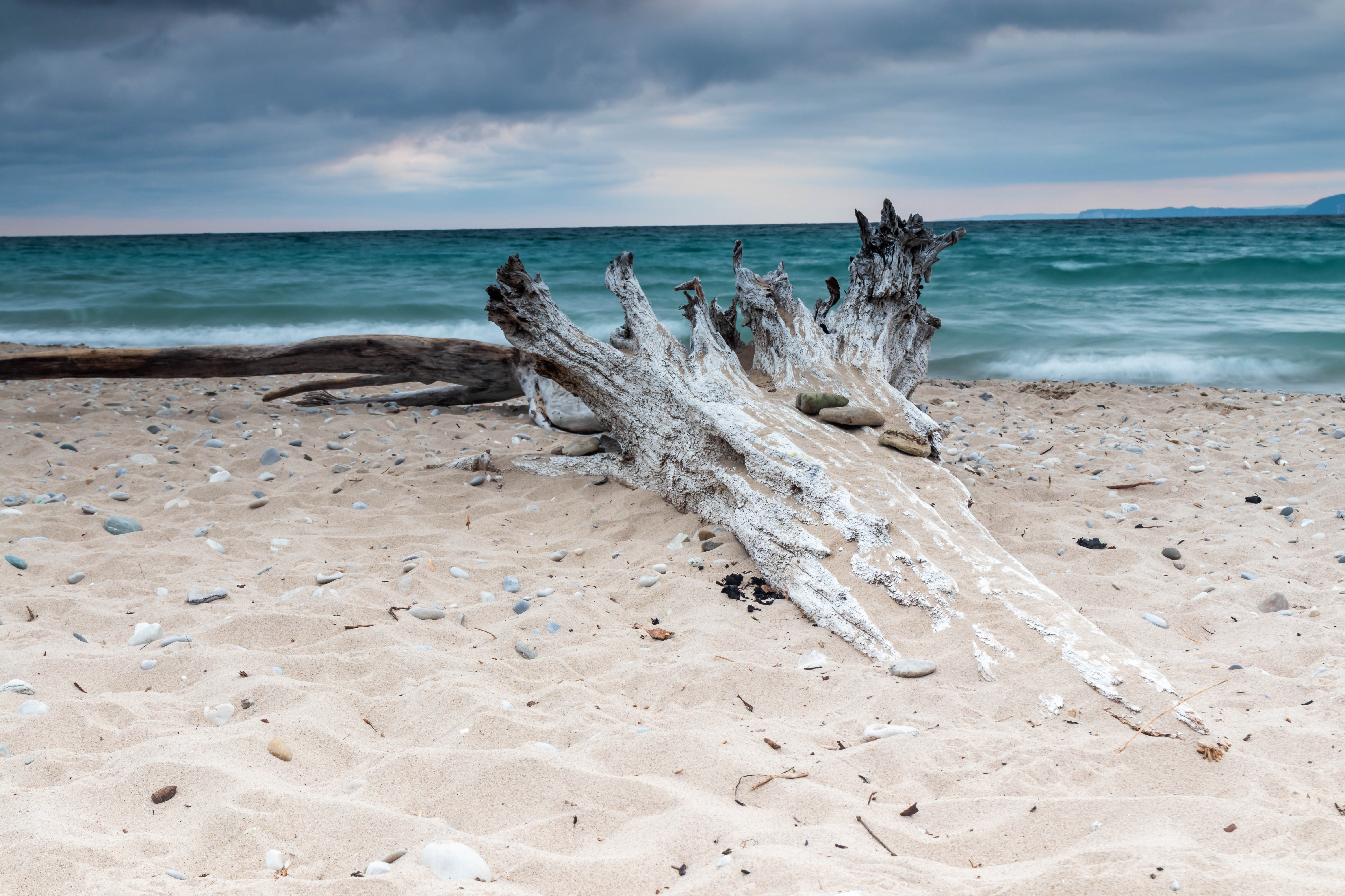 Driftwood on the beach at Good Harbor Bay