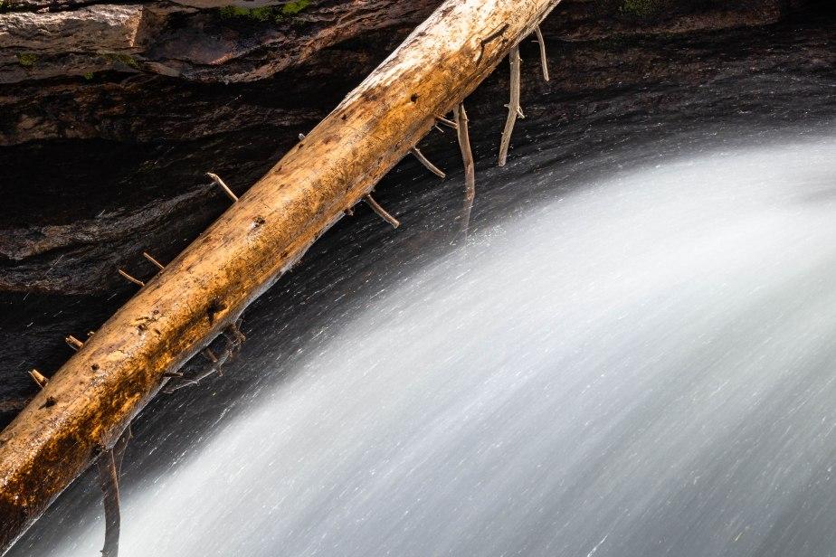 RMNP - Copeland Falls-5481