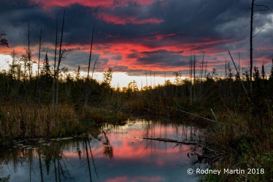 Shalda Creek-5876