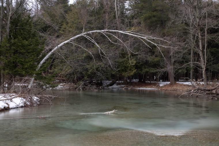 Crystal River 7516