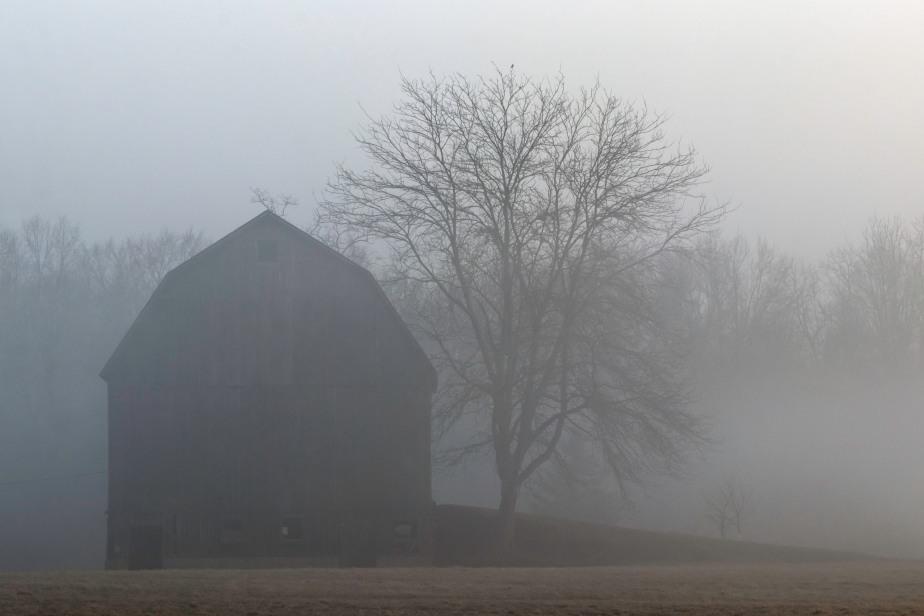 Four Mile Barn 7565