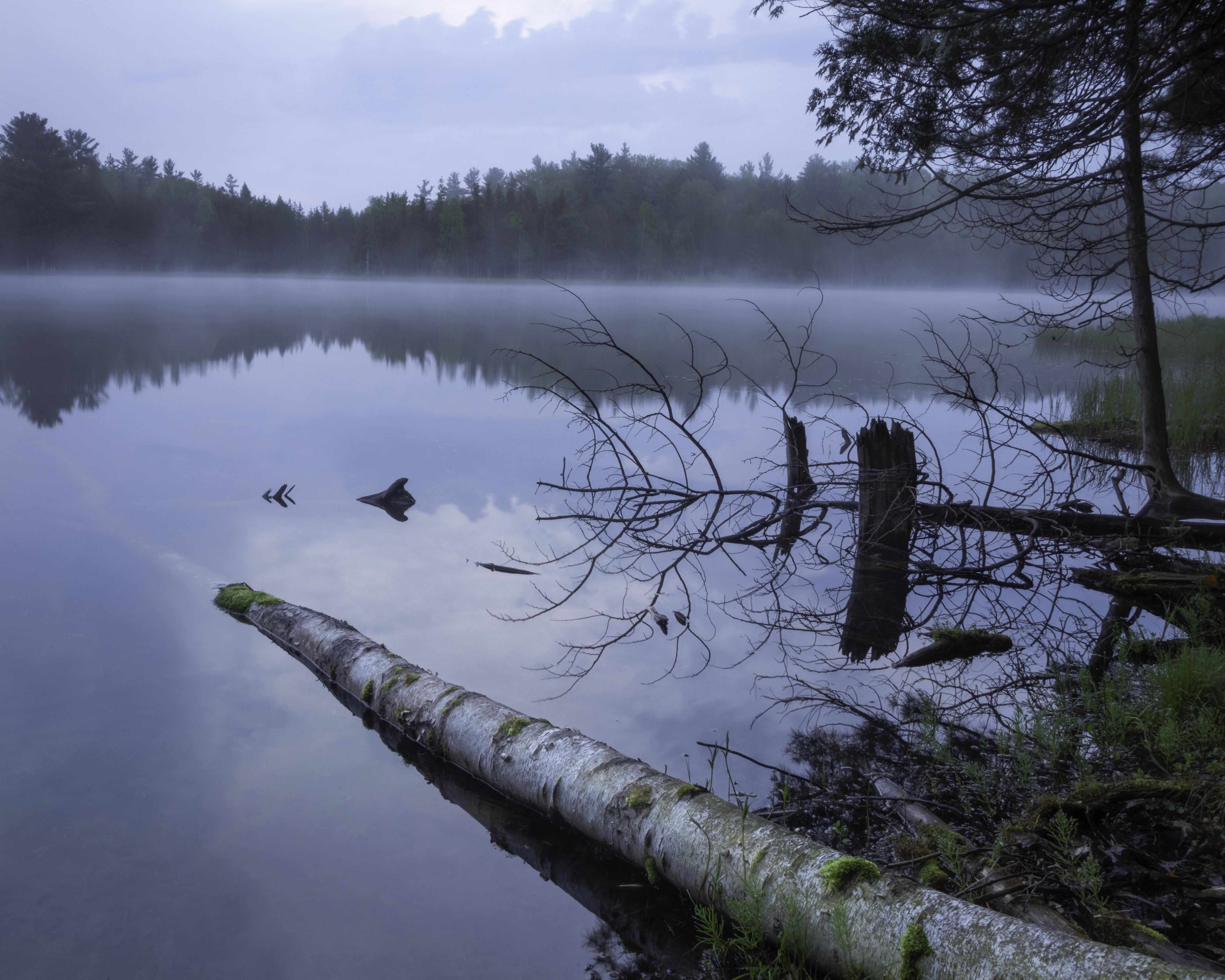 Bass Lake 8367-8314